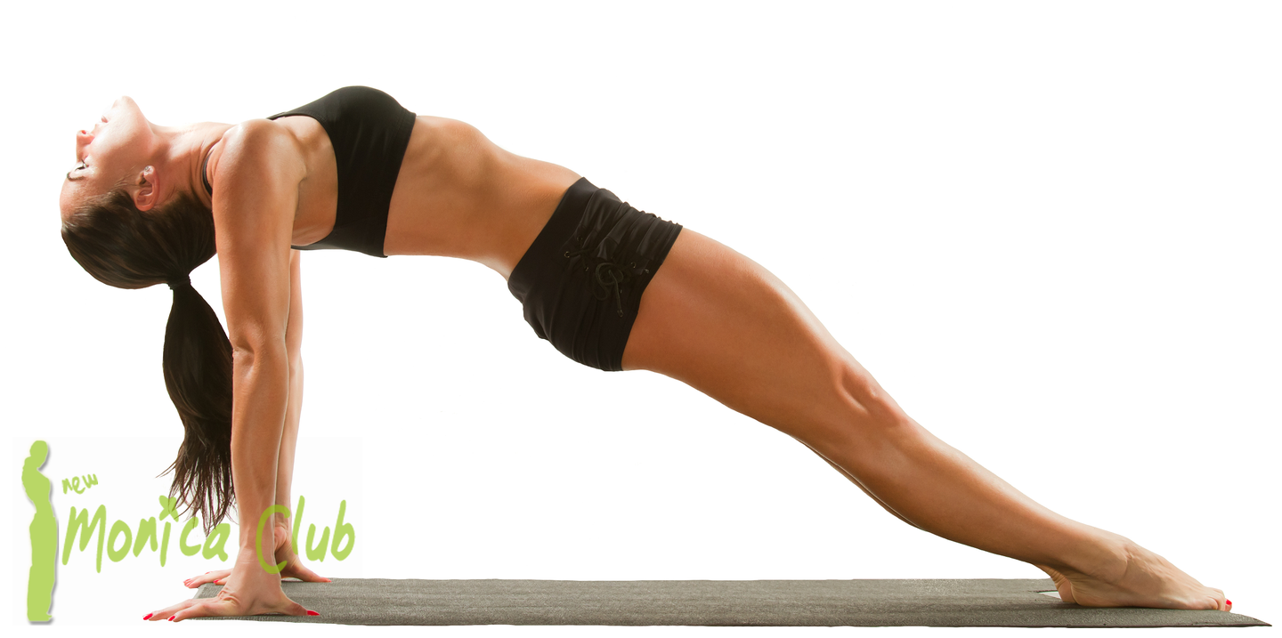 Monica club pilates for Plank workout results